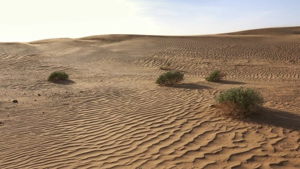 Thumbnail for Sand Blowing in Sand Dunes Wind Sahara Desert