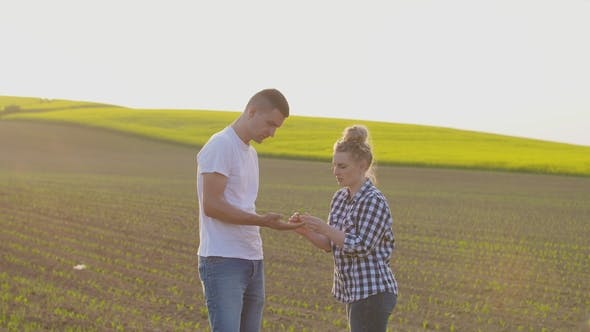 Thumbnail for Farmers Talking While Walking On Agricultural Field