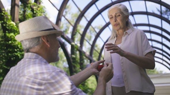 Thumbnail for Gorgeous Senior Woman Getting Marriage Proposal