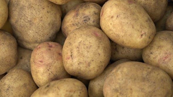 Thumbnail for Potato Pile Rotating Motion Background.