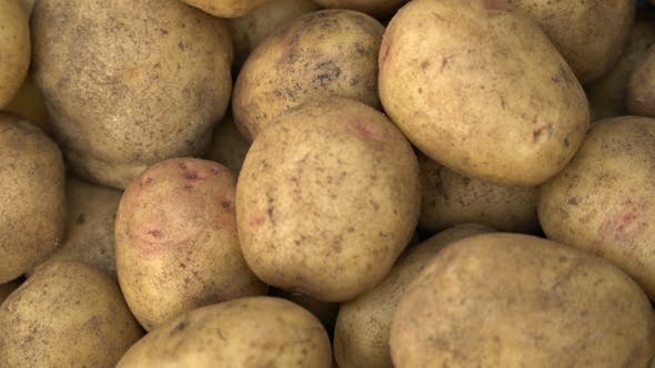 Thumbnail for Potato Pile Rotating Motion Background