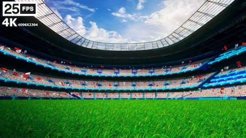 White Flying On Grass In Stadium 4K