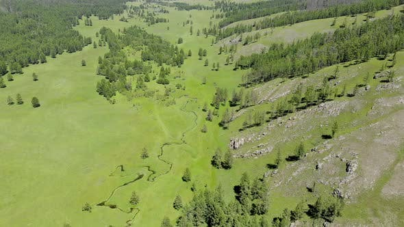 Green Meadows in The Sparsely Wooded Between Forest Covered Hills with Aerial View