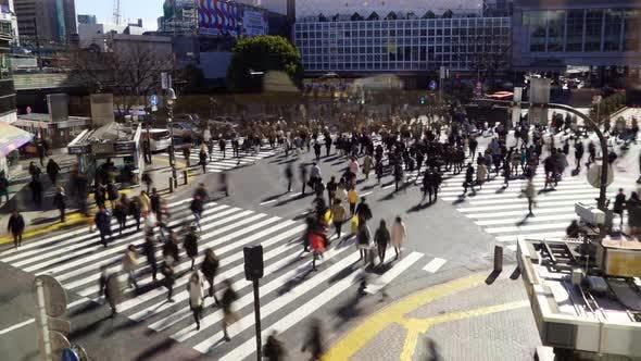 Thumbnail for Tokyo Shibuya Crossing Day