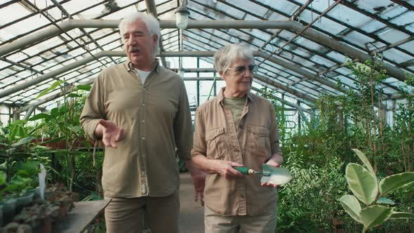 Elderly Couple with Grey Hair Walking through Greenhouse