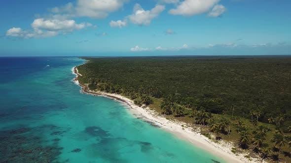 Thumbnail for Wonderful Island