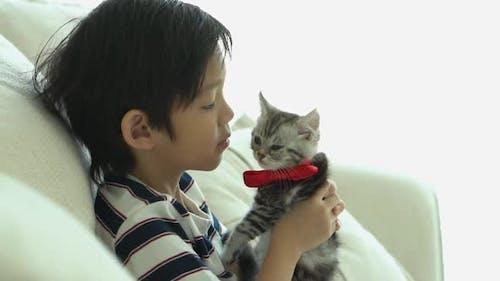 Asiatischer Junge spielt zu Hause mit Kitten auf dem Sofa