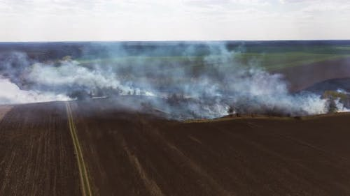 On the Field Burning Dry Grass. Footage. Burning of Straw on the Field. Fire, Burning Old Grass