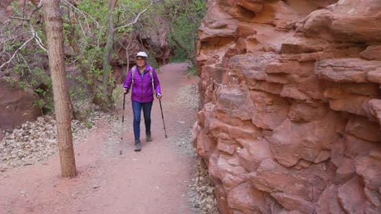 Thumbnail for Healthy white female hiker walking through dry climate environment