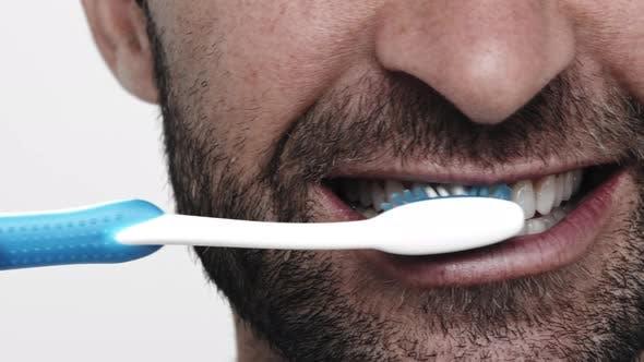 Oral Hygiene Guy