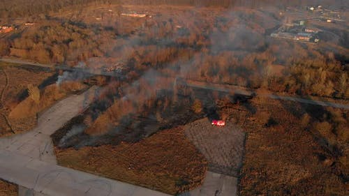The Brigade of Firemen Extinguishes the Burning Yellow Dry Grass.  Aerial Shot