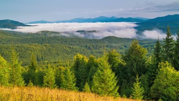 Thumbnail for Fantastic Sunrise over the Foggy Summer Mountain