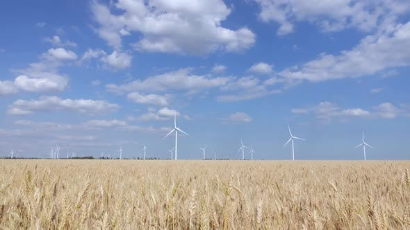 Panorama of Beautiful Landscape with Wind Generators in the Steppe Zone