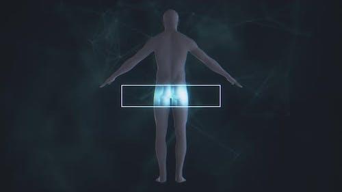 Male Body Scan 4K