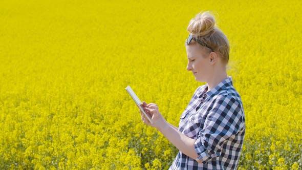 Thumbnail for Farmer Examining Rapeseed Blooming Plants
