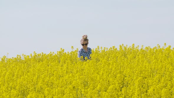 Cover Image for Farmer Examining Rapeseed Blooming Plants
