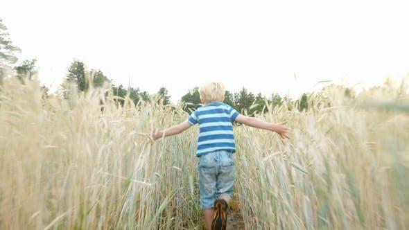Thumbnail for Boy Running Through Field