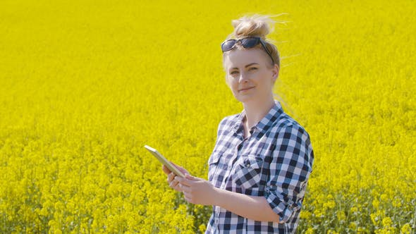 Cover Image for Farmer Touching Screen Of Digital Tablet At Rapeseed Field
