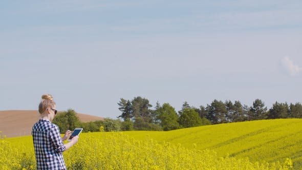 Thumbnail for Farmer Touching Screen Of Digital Tablet At Rapeseed Field