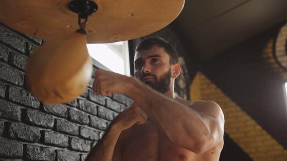 Thumbnail for Man Hitting Speed Bag in Gym Modern Boxer Punching Bag in Gym