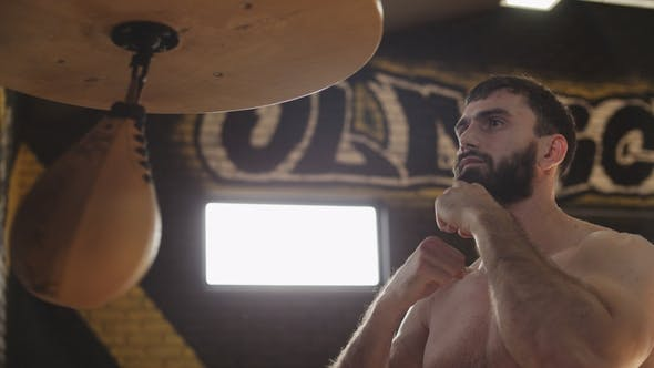 Thumbnail for Bearded Boxer Training with Speed Bag. Young Boxer Practicing Punches