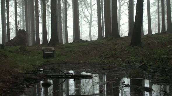 Thumbnail for Creepy Armchair in Woods