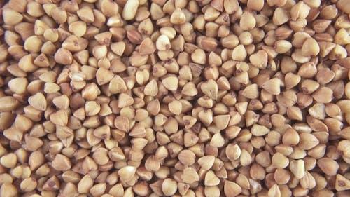 Pour Grain on Grain