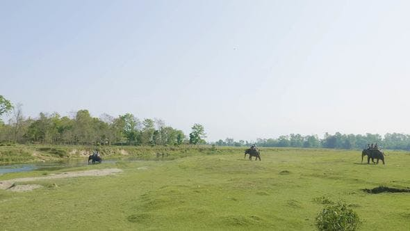 Thumbnail for Elephant Safari with Tourists in Jungle, National Park in Chaitwan, Nepal