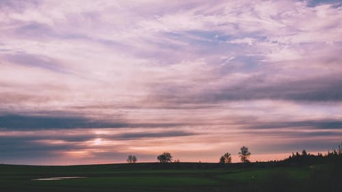 A Magnificent Sunset Over a Field with Pink Hues on the Clouds