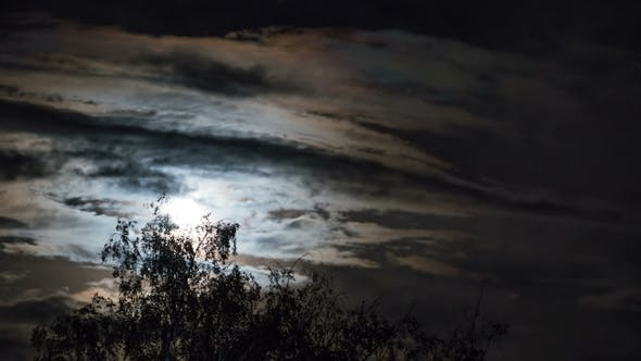 Thumbnail for Full Moon Moves in the Night Sky Through Dark Clouds and Trees