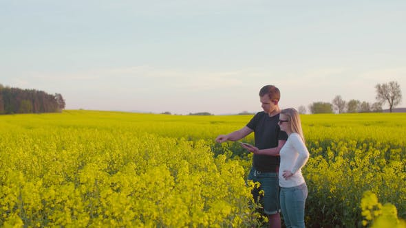 Thumbnail for Farmers Discussing over Tablet Computer at Rapeseed Field