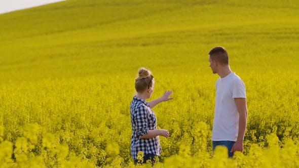Cover Image for Farmers Discussing At Rapeseed Field