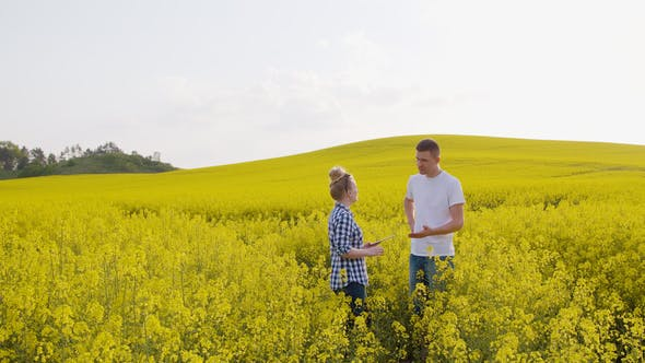 Thumbnail for Farmers Discussing Over Digital Tablet Computer At Rapeseed Field