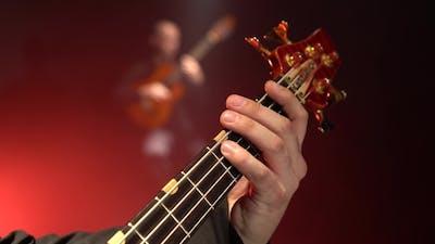 Bass Guitar. Two Guitarists Play the Guitar