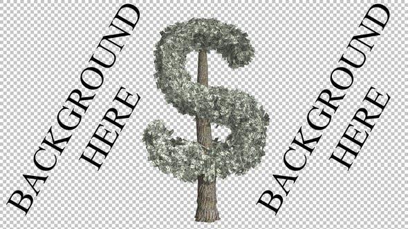 Thumbnail for Dollar-Baum