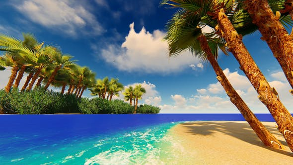 Thumbnail for Paradise