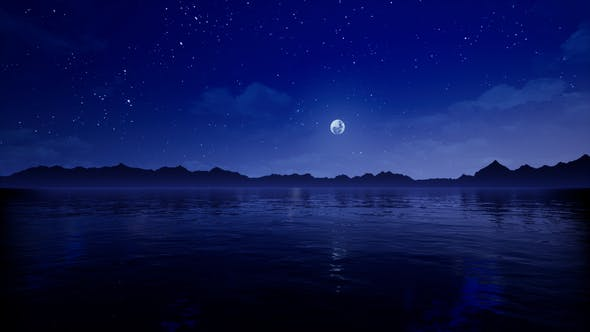 Thumbnail for Sea Night