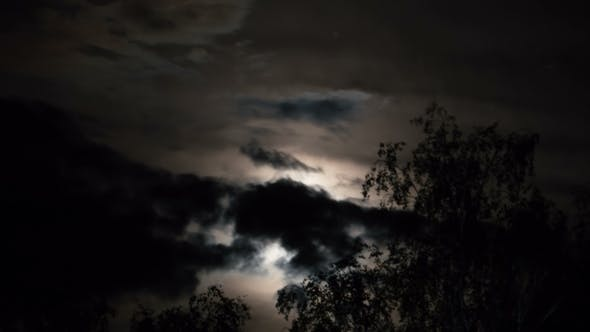 Thumbnail for Full Moon Moves in the Night Sky Through Dark Clouds and Trees. .