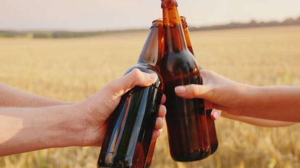 Cover Image for A Group of Friends Clink Glasses of Beer Bottles Against the Background of a Yellow Wheat Field