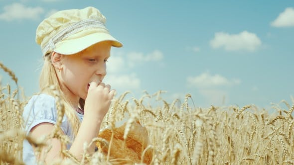 Thumbnail for A Little Girl Eats Bread on the Wheat Field
