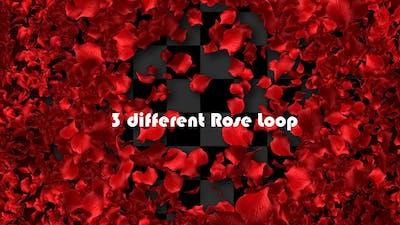 Rose Loop