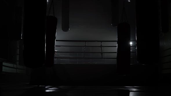 Thumbnail for Gym and Ring Evening Without People