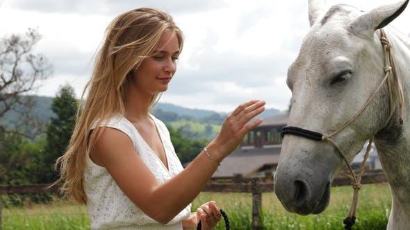 Thumbnail for Beauty Stroking Horse