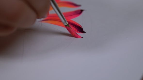 Thumbnail for Drawing Flower on White Canvas