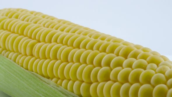 Thumbnail for One Partially Peeled Fresh Sweet Corn. Rotating on the Turntable. Isolated on the White Background