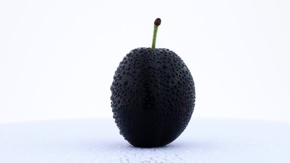 Thumbnail for One Whole Plum Fruit in Water Drops. Rotating on the Turntable. Isolated on the White Background