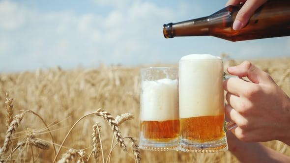 Thumbnail for Pour a Cool Beer in a Mug on the Field of Ripe Golden Wheat. To Quench Your Thirst and Organic