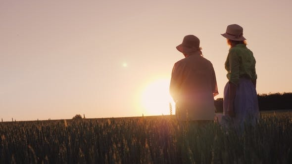 Thumbnail for Two Women  Look at the Beautiful Sunset Over the Wheat Field
