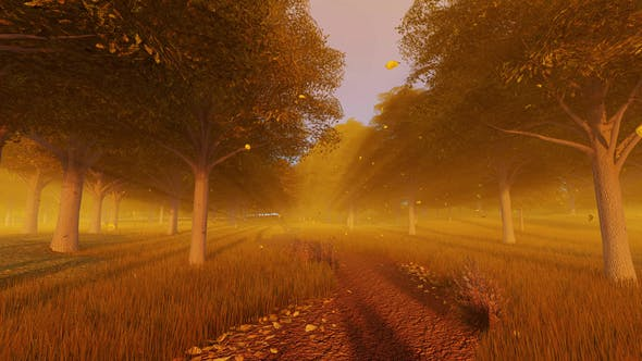Thumbnail for Forest In Autumn
