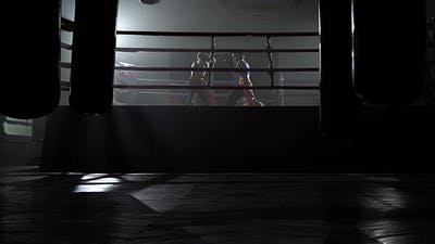 Two Guys in the Ring Fight